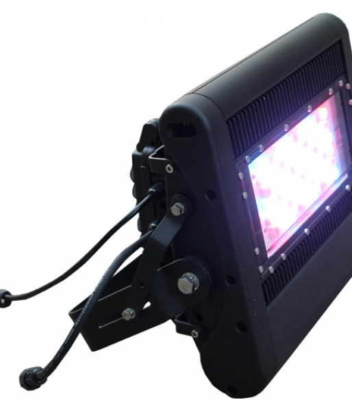 100W Colored LED Flood Light